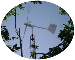 Wind Turbine Generator-2kw Wind Turbine (ZH)