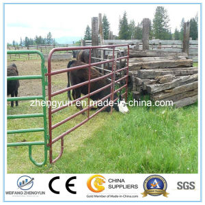 Welded Wire Mesh Fence for Field Fence