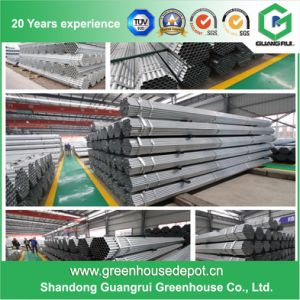 Factory Price Galvanized Steel Frame Agricultural Plastic Green House pictures & photos