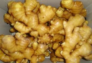 2015 Chinese Hot Sales Fresh Ginger