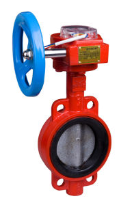 Fire Sign Butterfly Valve (midcourt line)