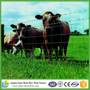 Livestock / Field / Farm / Grassland Cattle / Fixed Knot Staylock Deer Fence
