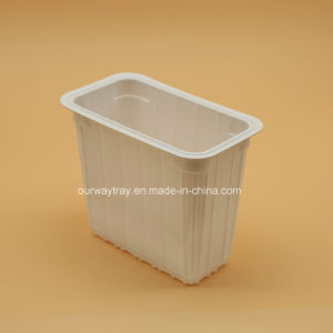 Wholesale Packaging Container