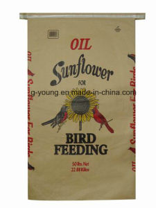 China Kraft Paper PP Paper Bag