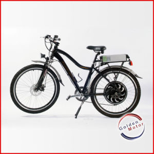 CE Approved Electric Bike/Hub Motor Electric Bicycle (LEB-300) pictures & photos