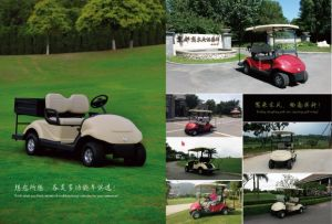48V Battery and 3800W DC Motor Mini Electric Golf Carts with Cargo Box
