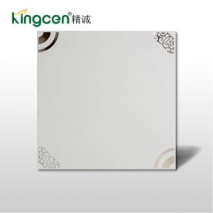 Integrated Ceiling Metal Panel (KC15901)