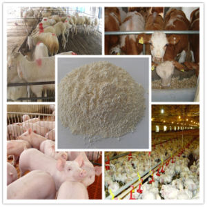Nano Zinc Oxide 97%Min Feed Grade pictures & photos