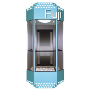 Observation Elevator/Lift pictures & photos