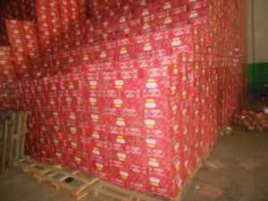 Hot Selling Tomato Paste for Togo pictures & photos