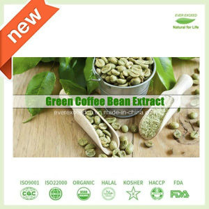 China Top Sales Free Samples Green Coffee Bean Extract Weight Loss