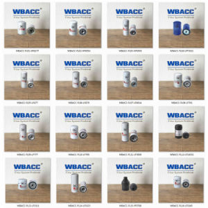 R60p Wbacc Hydraulic Oil Filter Element/Fuel Filter pictures & photos