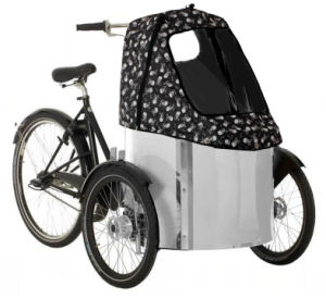 Child Electric Cargo Bikes for Family Using (DT-019-E) pictures & photos