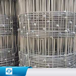 China Factory Price Wire Welded Cattle Panels for Sale - China Fixed ...