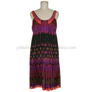 Ladies Silk Gauze Printed Dress