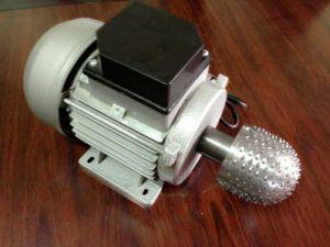 580969476 China Portable Electric Coconut Scraper - China Automotive Coconut ...