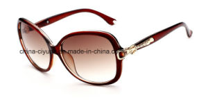 New Fashion Injection Woman Sunglasses with Acrylic Lens (1516)