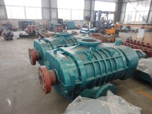 High Pressure Big Volume Roots Blower for Sewage Treatment
