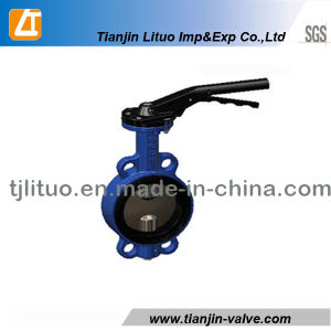 Cast Iron Tyflon Lined Butterfly Valve pictures & photos