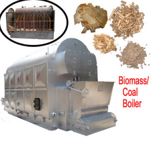 Hemp Palm Shell Fired Hot Water Boiler