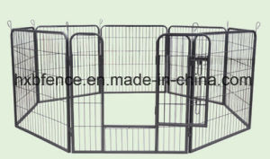 Outdoor Large Square Tube PVC Covered Dog Kennels pictures & photos