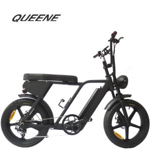 Wholesale Delivery Electric Bicycle, Wholesale Delivery