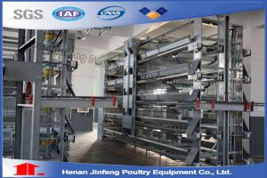 Jaulas Pollos Jfa160 Fabricadas En China/Chicken Cage