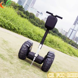 Personal Transport Eelectric Bike with 2 Wheel pictures & photos