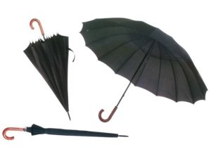 Promotional 16 Ribs Umbrella (BR-ST-108) pictures & photos