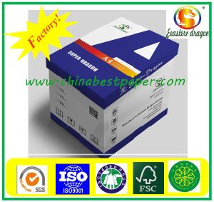 Big Rolls Copy Paper-80g (80g copy paper) pictures & photos