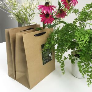 Customized White Kraft Paper Food Bag with Twisted Handle Machine Made