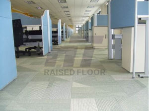 Steel Cementitious Raised Floor (Grey-White Powder) pictures & photos