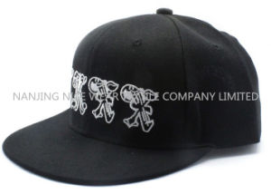 Fashion Snapback Cap with Embroidery