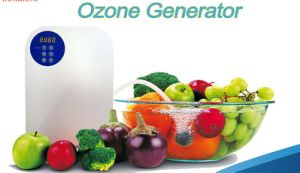 Portable O3 Ozonizer Water Ozone Generator for Vegetables and Fruits