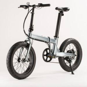 Cheap 250W Folding Electric Bikes with Motorcycle Seat Price (RSD-101)