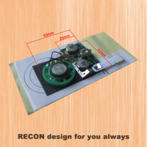 China custom sound chip for greeting cards china custom sound chip custom sound chip for greeting cards m4hsunfo