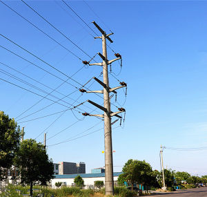 110 Kv Power Transmission Pole with Double Circuit pictures & photos