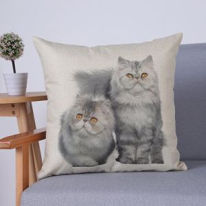 Digital Print Decorative Cushion/Pillow with Cats Pattern (MX-75) pictures & photos