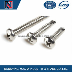 High Quality Cross Recessed Round Self-Drilling Tapping Screw with Competitive Price pictures & photos