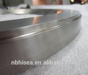 Stainless Steel Ring Flange Bearing for Architectural pictures & photos