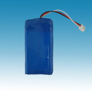 3.7V/3100mAh Lithium Ion Polymer Battery Pack