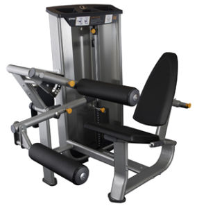 Commercial/Fitness/Fitness Equipment/Seated Leg Curl