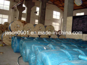 Wire Rope, Stainless Steel Wire, Wire Rope, Stainless Wire Rope pictures & photos