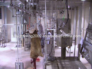 Cow Slaughtering Line Made in China