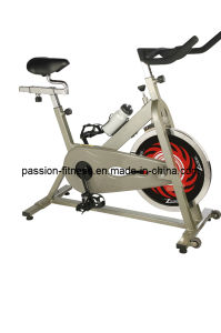 Home Use Spinning Bike for Bodybuilding (PS860) with SGS