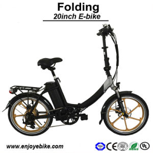 20inch Hot Selling Promotion E-Bike Brushless Motor E-Bicycle Electric Bike Folding Electric Bicycle (PE-TDN02Z)