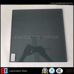 Euro Grey/ Laminated/Color/Building Glass