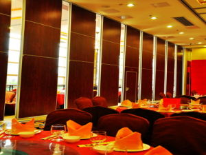 Acoustic Ultra-High Partition Walls for Conference Hall