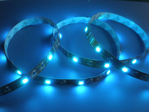 Waterproof LED Strip/ 5050 SMD Strip/ Flexible LED Strip pictures & photos