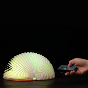 Remote Control Semicircle Book Lamp, Book Style Desk Table Night Light Creative Remote Control Version USB Rechargeable Lamp Foldable Portable pictures & photos